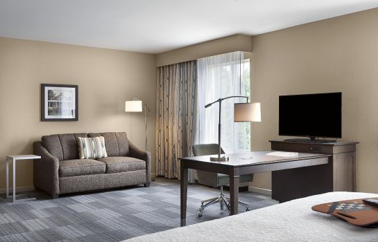 Suite Hampton Inn - Suites Fort Mill SC