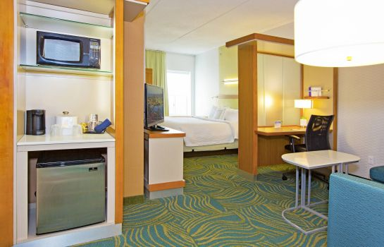 Suite SpringHill Suites Pittsburgh Mt. Lebanon