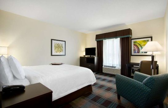 Zimmer Hampton Inn - Suites York South