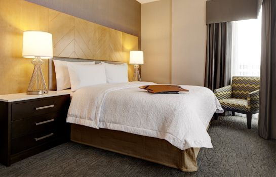 Zimmer Hampton Inn Brooklyn-Downtown NY