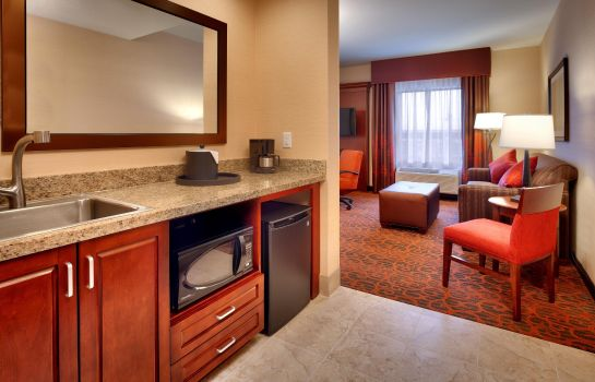 Hotel-Bar Hampton Inn Omaha-West Dodge Road -Old Mill- NE