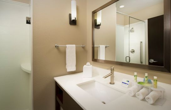 Zimmer Holiday Inn Express & Suites WACO SOUTH