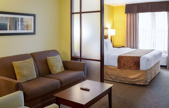 Suite Comfort Suites Harvey - New Orleans West