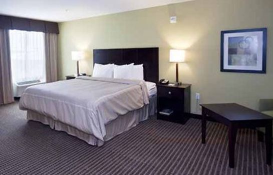 Zimmer Comfort Suites Harvey - New Orleans West