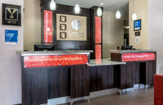 Hol hotelowy Comfort Inn and Suites Mansfield