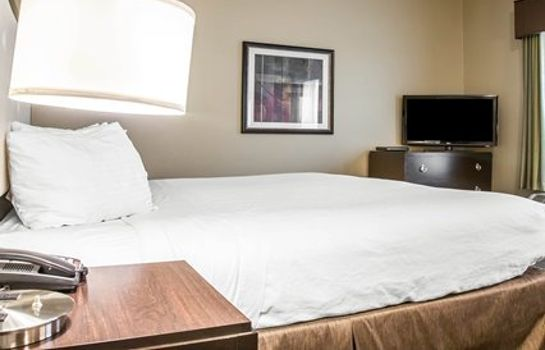 Suite an Ascend Hotel Collection Member enVision Hotel Boston-Longwood
