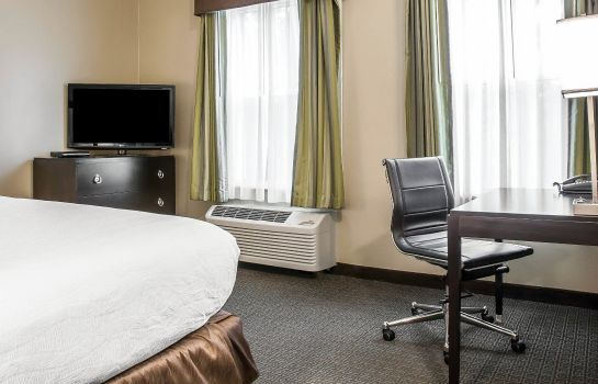 Room an Ascend Hotel Collection Member enVision Hotel Boston-Longwood