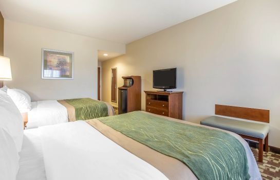 Camera Comfort Inn & Suites Orangeburg