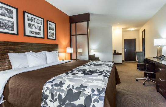 Room Sleep Inn & Suites Lubbock