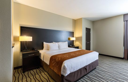 Zimmer Comfort Suites Houston West Beltway 8