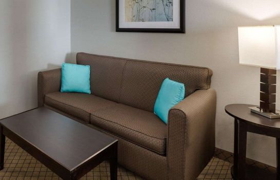 Suite Comfort Suites at Katy Mills Comfort Suites at Katy Mills
