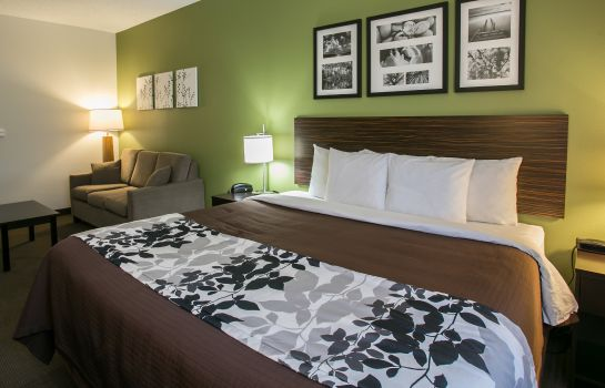 Room Sleep Inn & Suites Dripping Springs