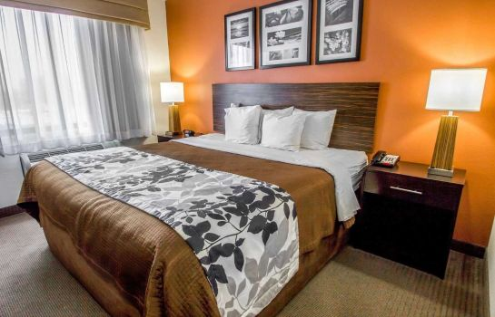 Info Sleep Inn and Suites near JFK Air Train