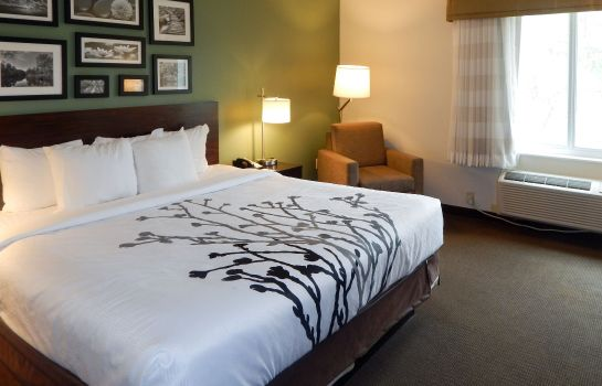 Zimmer Sleep Inn & Suites Evergreen