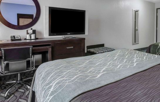Room Comfort Inn & Suites I-10 Airport