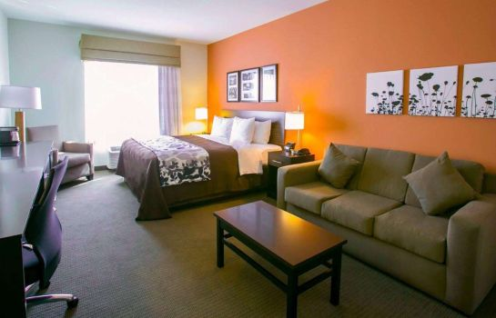Suite Sleep Inn & Suites Austin - Northeast