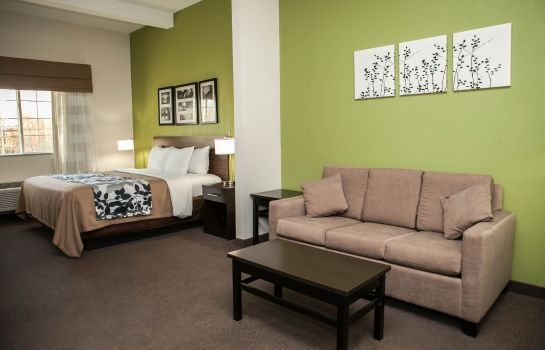 Suite Sleep Inn and Suites Harrisburg - Hershe
