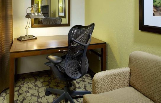 Suite Hilton Garden Inn Roanoke