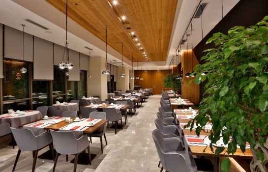 Restaurant Dosso Dossi Hotels DownTown