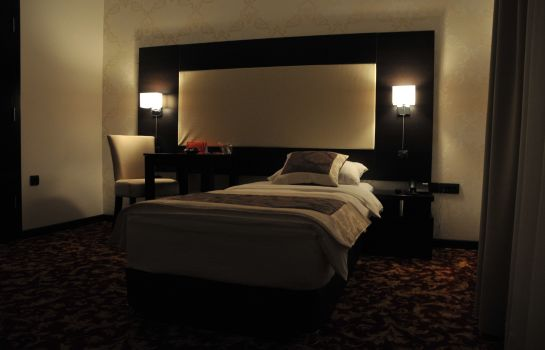 Single room (standard) Hotel Espana
