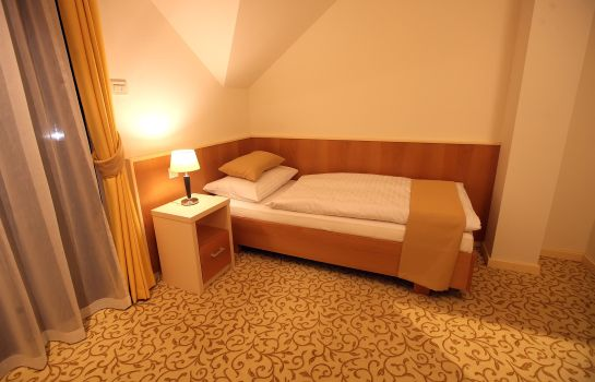 Single room (standard) Hotel Gallus