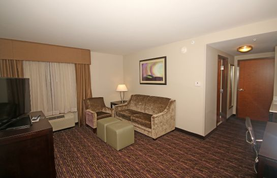 Pokój Holiday Inn Express & Suites CHARLOTTE NORTH