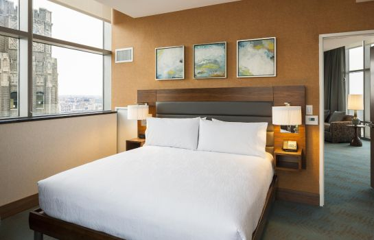 Chambre Hilton Garden Inn Long Island City Queensboro Bridge