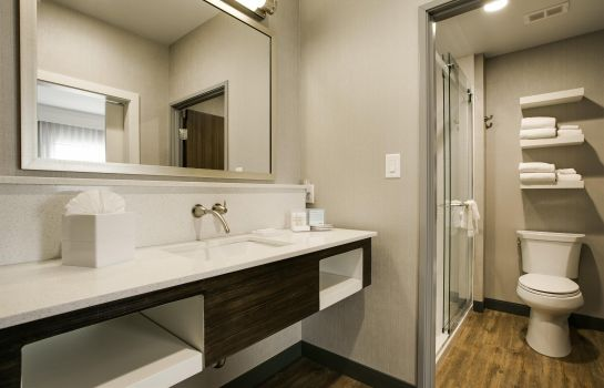 Suite Hampton Inn - Suites - Dallas-Ft Worth Airport South TX