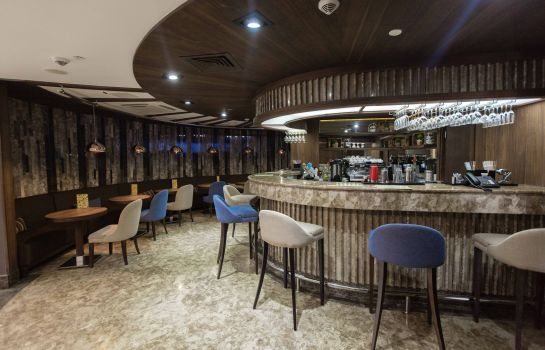 Hotel bar PARK INN BY RADISSON IZMAILOVO MOSCOW