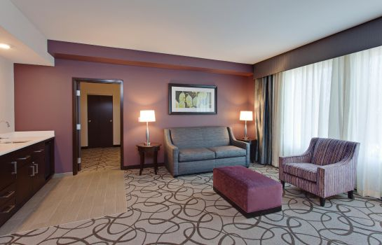 Suite Hilton Garden Inn Irvine-Orange County Airport