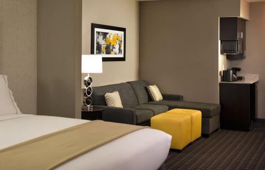 Suite Holiday Inn Express & Suites MADISON CENTRAL