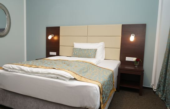 Double room (standard) Hotel Class
