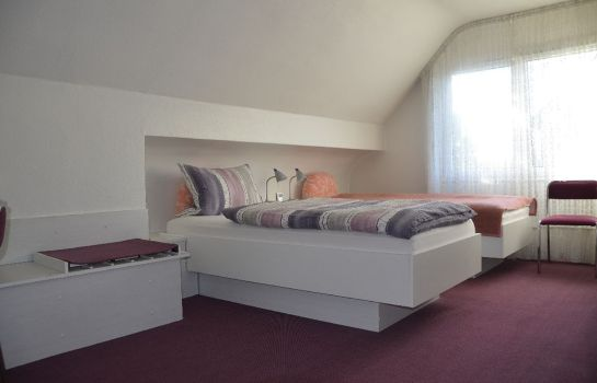 Double room (standard) AirMinis