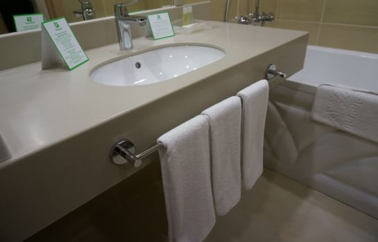 Zimmer Holiday Inn UFA