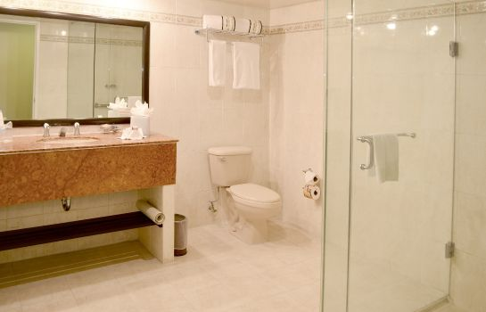 Bathroom Mision Express Pachuca