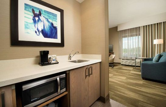 Suite Hampton Inn - Suites Baltimore North-Timonium MD