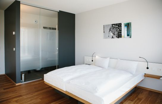 Chambre double (standard) OX Hotel Altes Spital