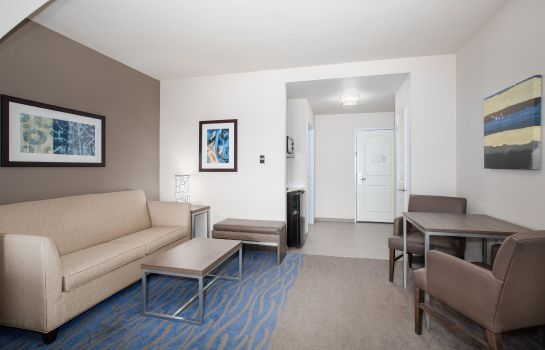 Suite Holiday Inn Express & Suites MANHATTAN