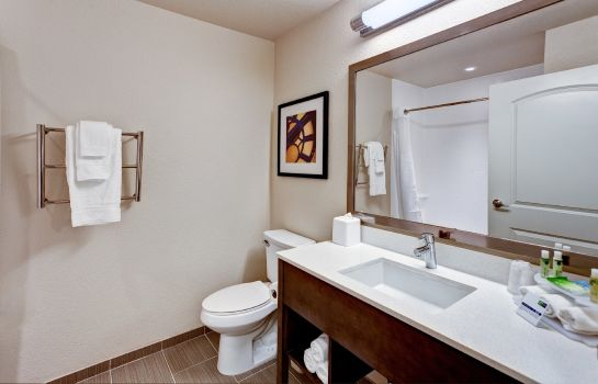 Zimmer Holiday Inn Express & Suites MANHATTAN