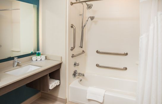 Kamers Holiday Inn Express & Suites LITCHFIELD WEST