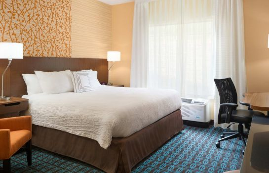 Chambre Fairfield Inn & Suites Athens