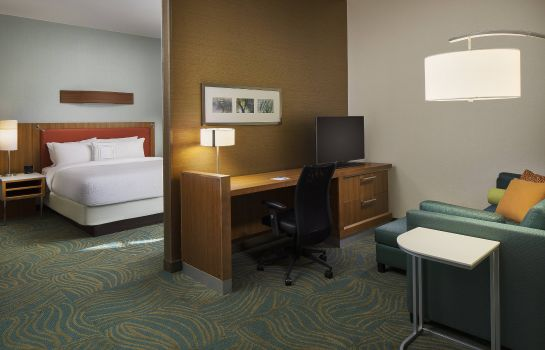 Suite SpringHill Suites Houston Downtown/Convention Center