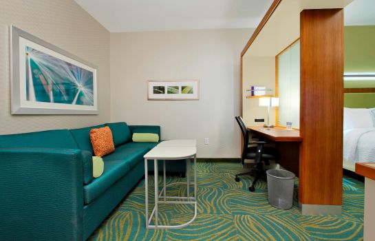 Suite SpringHill Suites Houston I-10 West/Energy Corridor