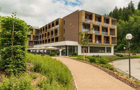 Albert Badewanne hotel könig albert in bad elster hotel de