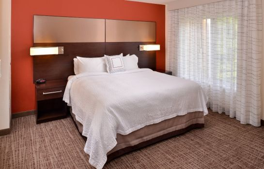 Suite Residence Inn East Lansing