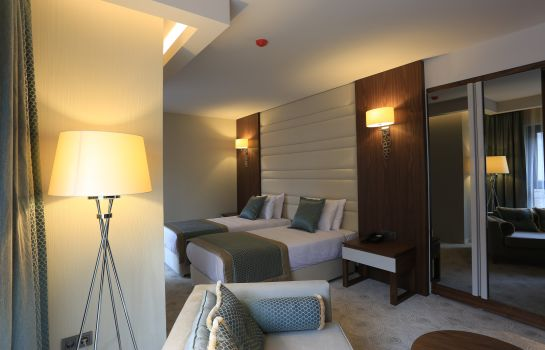 Chambre double (standard) Hassuites Otel