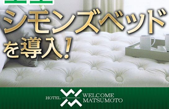 Double room (standard) Hotel Welcome Matsumoto