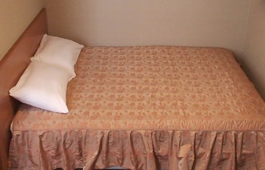 Double room (standard) Hotel New Park