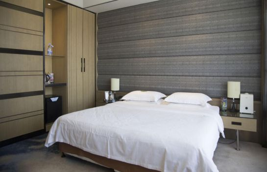 Chambre individuelle (standard) Haide Hotel