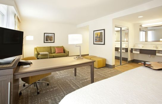 Suite Hampton Inn - Suites - Minneapolis-Downtown MN
